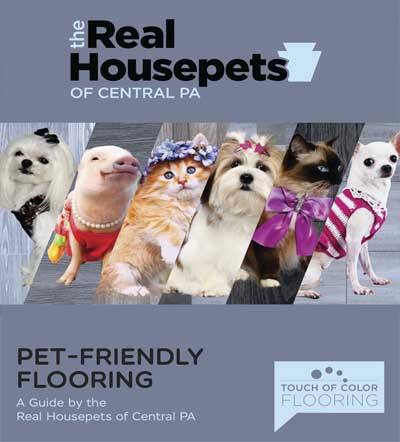 Touch of Colors of Harrisburg PET-FRIENDLY FLOORING A Guide by the Real Housepets of Central PA